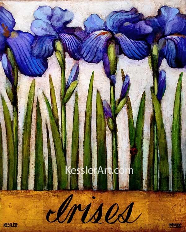 Irises 72 dpi for web
